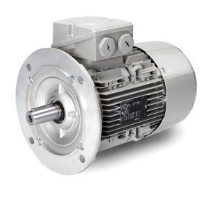 Электродвигатели Siemens 1LE1002